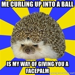 Disapproval Hedgehog - Me curling up into a ball is my way of giving you a facepalm