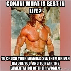 Cruel Conan - Conan! What is best in life?  To crush your enemies, see them driven before you, and to hear the lamentation of their women.