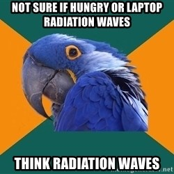 Paranoid Parrot - not sure if hungry or laptop radiation waves think radiation waves