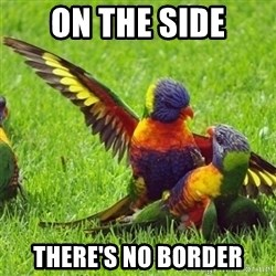 angrybird - on the side there's no border