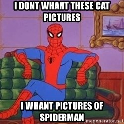 spider manf - i dont whant these cat pictures I WHANT PICTURES OF SPIDERMAN