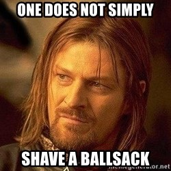 Boromir - One Does Not simply Shave a ballsack