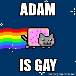 Nyancat - Adam Is Gay