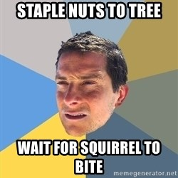 Bear Grylls - staple nuts to tree wait for SQUIRREL to bite