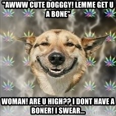 "Original Stoner Dog - ""awww cute dogggy! lemme get u a bone"" Woman! Are u high?? I dont have a boner! I swear..."