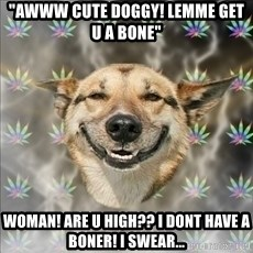 "Original Stoner Dog - ""Awww cute doggy! lemme get u a bone"" Woman! are u high?? I dont have a boner! I swear..."