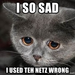 Sadcat - I SO SAD i used teh netz wrong