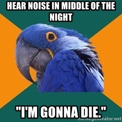 "Paranoid Parrot - Hear noise in middle of the night ""i'm gonna die."""