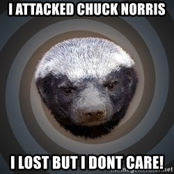 Fearless Honeybadger - I attacked chuck norris i lost but i dont care!