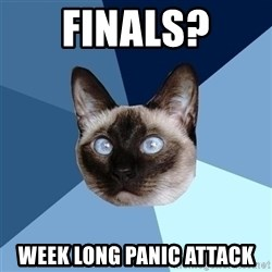 Chronic Illness Cat - Finals? week long panic attack