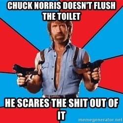 Chuck Norris  - Chuck Norris doesn't flush the toilet He scares the shit out of it