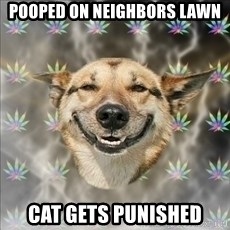 Original Stoner Dog - Pooped on neighbors lawn Cat gets Punished