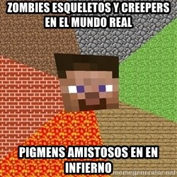 Minecraft Guy - zombies esqueletos y creepers en el mundo real pigmens amistosos en en infierno