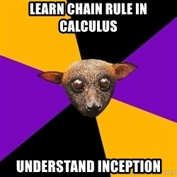 Engineering Student Bat - learn chain rule in calculus understand inception