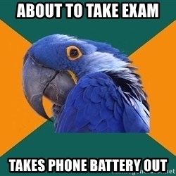 Paranoid Parrot - about to take exam takes phone battery out