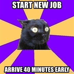 Anxiety Cat - Start new job arrive 40 minutes early