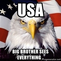 American Pride Eagle - USA big brother sees everything ..