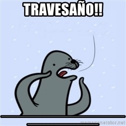 gay seal - Travesaño!! ____________________________________________________
