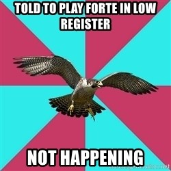 Flute falcon - told to play forte in low register not happening