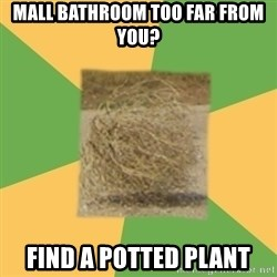 Busy Tumbleweed - mall bathroom too far from you? Find a potted plant