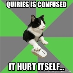 roleplayercat - Quiries is confused it hurt itself...
