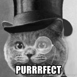 Monocle Cat - PURRRFECT