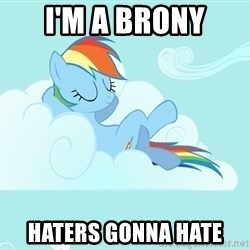 My Little Pony - I'm a brony haters gonna hate