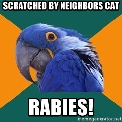 Paranoid Parrot - scratched by neighbors cat rabies!