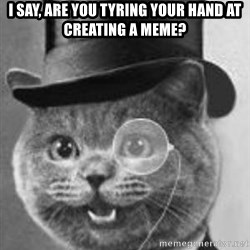 Monocle Cat - I say, are you tyring your hand at creating a meme?