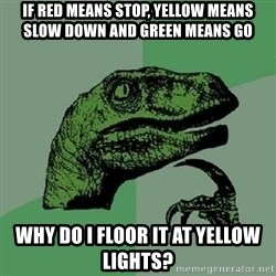 Philosoraptor - if red means stop, yellow means slow down and green means go why do i floor it at yellow lights?