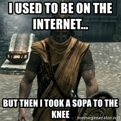 skyrim whiterun guard - I used TO BE ON THE INTERNET...               but then i TOOK A SOPA TO THE KNEE