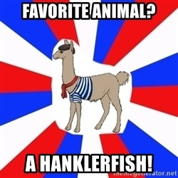French the Llama - Favorite animal? a hanklerfish!