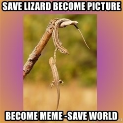 Hang in there Lizards - save lizard become picture become meme -save world