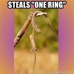 """Hang in there Lizards - steals """"one ring"""""""