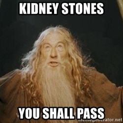 You shall not pass - Kidney stones you shall pass