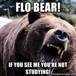Bear week - FLO BEAR! IF YOU SEE ME YOU'RE NOT STUDYING!