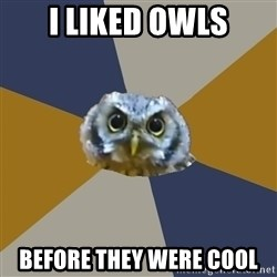 Art Newbie Owl - i liked owls before they were cool