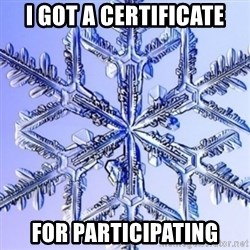 Special Snowflake meme - I got a certificate For participating