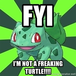 Advicing Turtle - FYI I'm not a freaking turtle!!!!