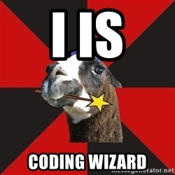 Epic Level Llama - i is coding wizard