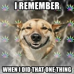 Stoner Dog - I Remember when i did that one thing
