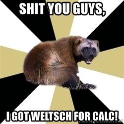 Westview wolverine - shit you guys, I got Weltsch for calc!