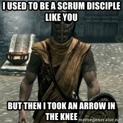 skyrim whiterun guard - I used to be a scrum disciple like you but then I took an arrow in the knee