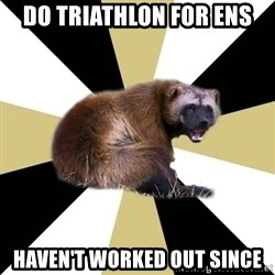 Westview wolverine - DO TRIATHLON FOR ENS HAVEN'T WORKED OUT SINCE