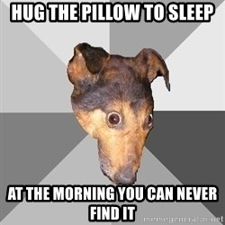 Depressed Dog - hug the pillow to sleep at the morning you can never find it