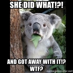 Koala can't believe it - She did what!?! and got away with it!? wtf?