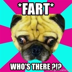 Perplexed Pug - *FaRt* Who's there ?!?