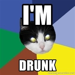 Winnipeg Cat - I'm DRUNK