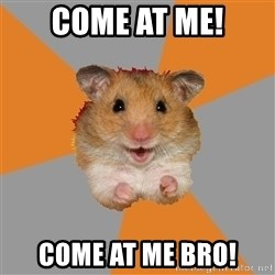 hamster seiyuulover - Come At me! Come at me bro!