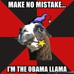 Epic Level Llama - Make no mistake... I'm the obama llama